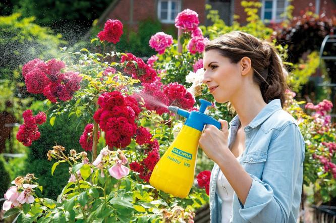Llar i jardineria